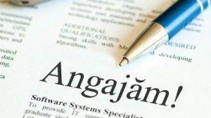 Aproape 1400 de locuri de muncă sunt disponibile în județul Arad