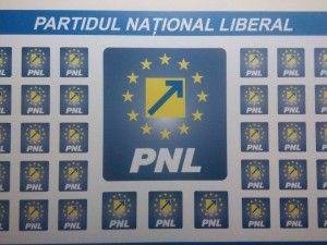 Falcă foloseşte abuziv Biroul de Presă al PNL Arad în lupta cu Abrudan