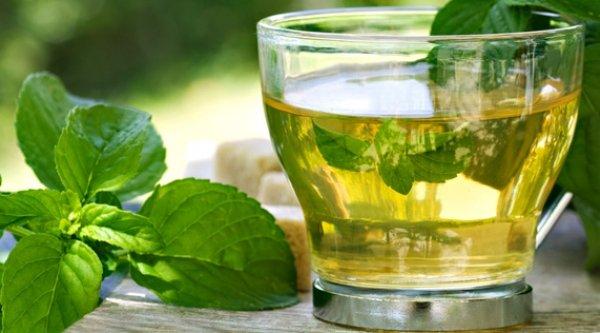 Nu obișnuiești să bei ceai de busuioc? Vezi de ce ar trebui să o faci