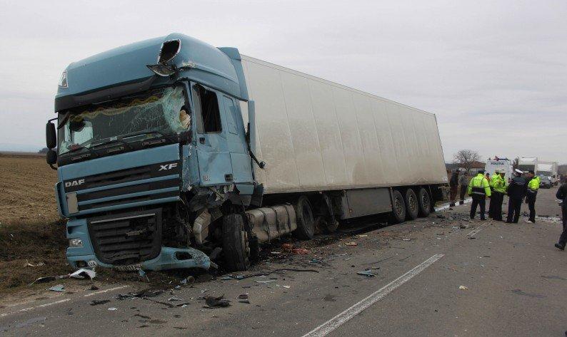 Un fazan a provocat un accident între Chişineu-Criş şi Zerind