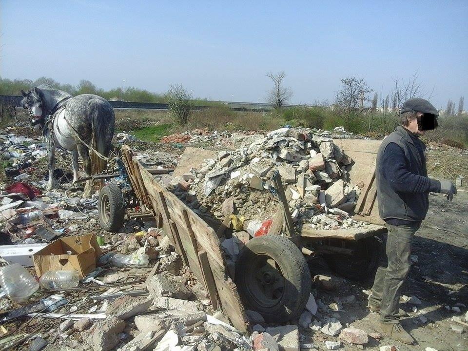 Poliția Locală a amendat un arădean cu 1000 de lei, pentru depozitarea ilegală a deșeurilor