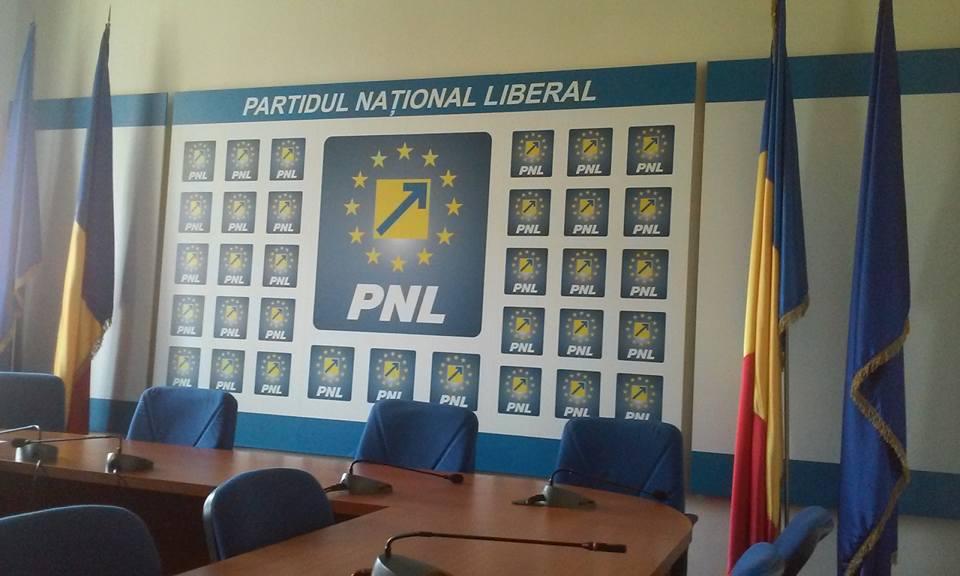 PNL îşi răsplăteşte cu bani publici oamenii care muncesc zi de zi pentru partid