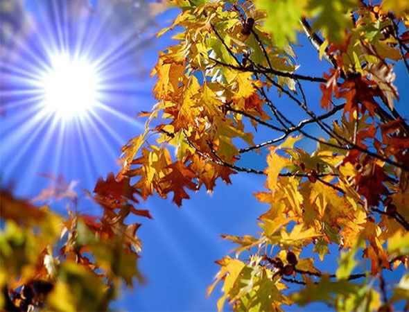 Prognoza meteo până în 22 octombrie
