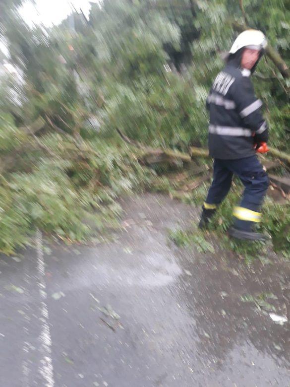 Copaci smulși de vânt, drumuri blocate, curți și case inundate, în urma furtunii de aseară